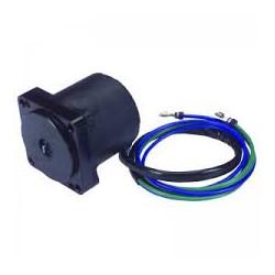 Tilt / trim motor OMC 439937 replace - 1