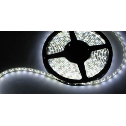LED Strips - 1