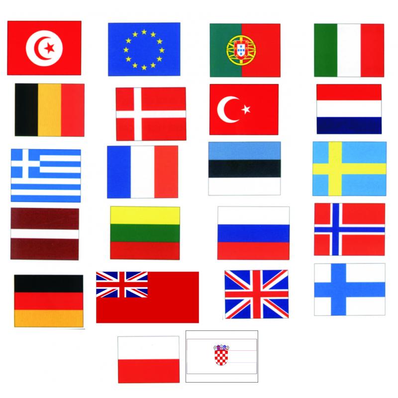 Gæsteflag 30 x 20 cm - 2